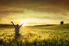 Lees hier het hele artikel over de keuze van mensen om de sabbat te vieren i.p.v. de zondag